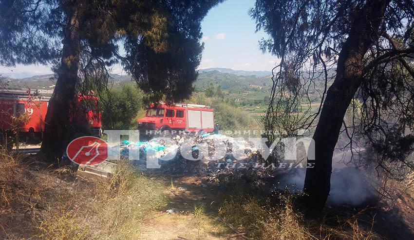 fotia-xeimadio2