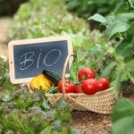 Ολοκληρώθηκε η διαδικασία πληρωμών βιολογικής γεωργίας 2012