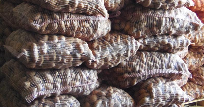 patata-ellinopoihsh-kuklwma