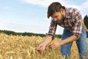 Πώς οι νέοι αγρότες μπορούν να απαλλαγούν από το ΦΠΑ