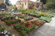 Δημοπρατείται η ανάπλαση της πλατείας Ανεμομύλου και Καραμαλού από το Δήμο Ήλιδας μέσω του Πράσινου Ταμείου