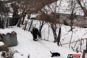 H 90χρονη στη Λυνίσταινα που κουβαλά μέσα στα χιόνια ξύλα για το τζάκι!