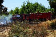 Πρόλαβαν πυρκαγιά στον Καϊάφα