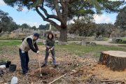 Φύτεψαν δέντρα στον αρχαιολογικό χώρο της Ολυμπίας τα μέλη της Περιβαλλοντικής Δράσης Ηλείας